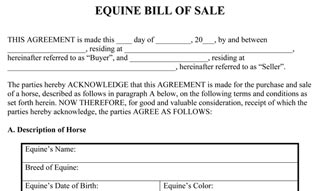 Equine Bill Of Sale